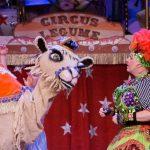 Jack & The Beanstalk - Comedy Camel & Dame